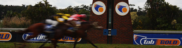 Sports Betting Sport horses crossing the finish line